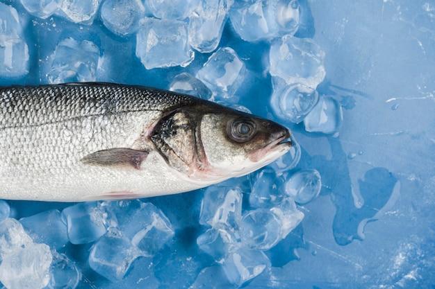 Vista superior de pescado en cubitos de hielo