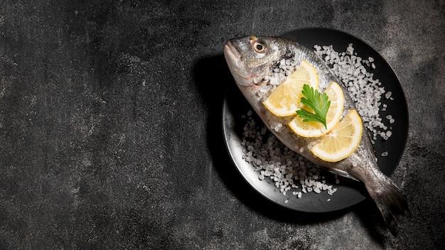 Vista superior de pescado en el espacio de copia de placa