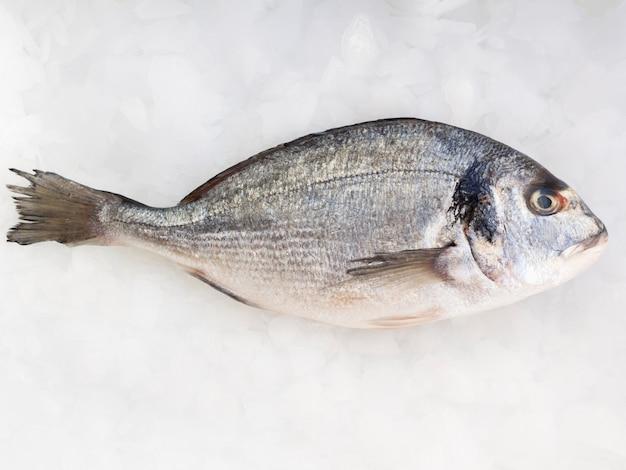 Vista superior de pescado fresco en la mesa con cubitos de hielo