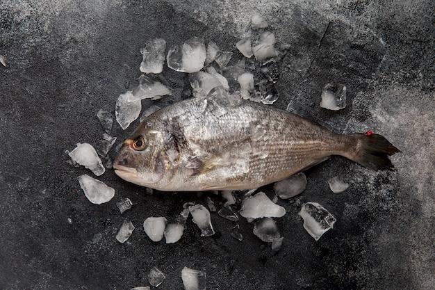 Vista superior de pescado en hielo
