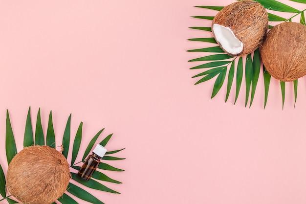 Vista superior plana creativa de hojas de palmera tropical verde, frutos de coco y cosméticos de aceite de coco para el cuidado de la piel y el cabello sobre fondo de papel rosa