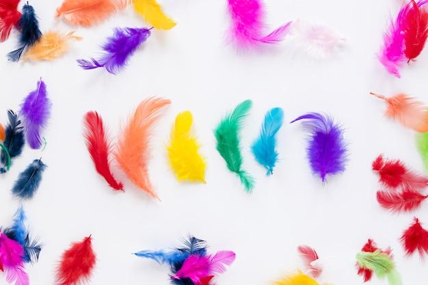 Vista superior de plumas de colores