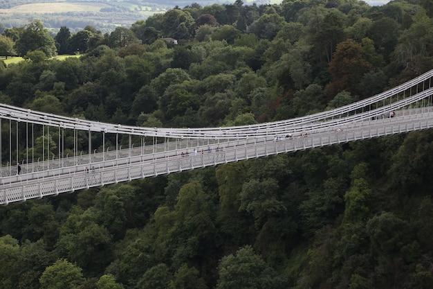 Vista superior de un puente plateado pasando por un pozo cubierto de árboles