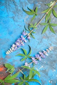 Vista superior de ramas de flores moradas sobre superficie azul