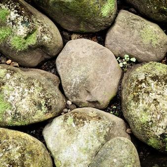 Vista superior de rocas y fondo de musgo