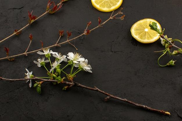 Vista superior rodajas de limón agridulce jugoso junto con flores blancas en el piso oscuro