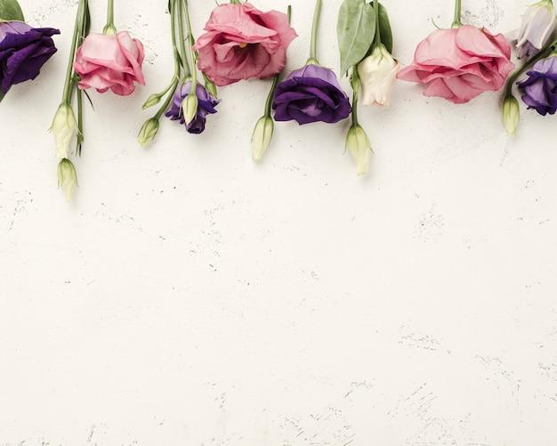 Vista superior rosas alineadas en la mesa
