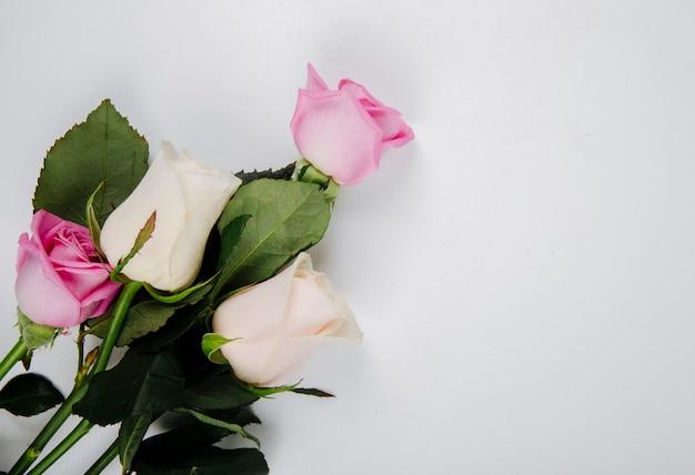 Vista superior de rosas de color rosa y blanco aisladas sobre fondo blanco con espacio de copia