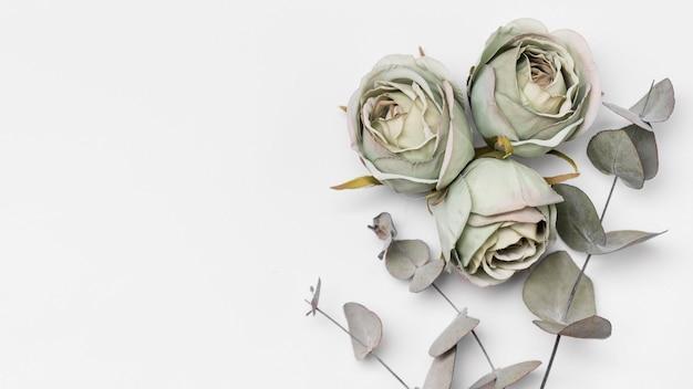 Vista superior de rosas con espacio de copia