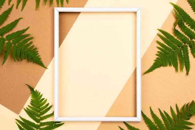 Vista superior de la selección de hojas de helecho con marco.