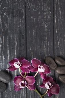 Vista superior spa piedras con orquídeas sobre la mesa