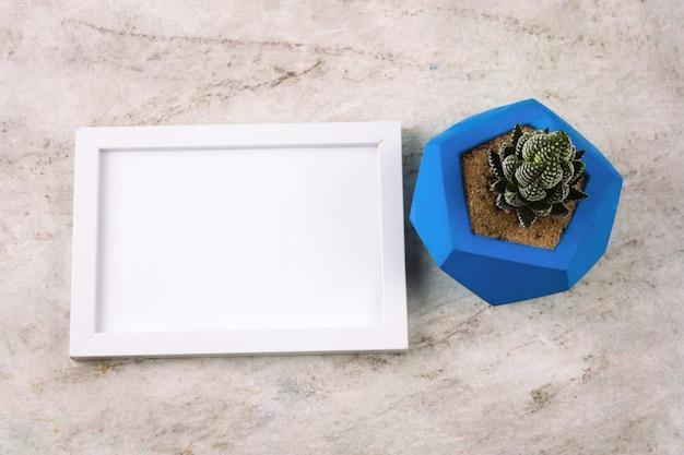 Vista superior suculenta en maceta de hormigón azul y marco de maqueta blanca sobre una mesa de mármol
