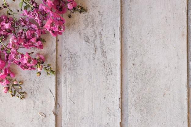 Vista superior de superficie con flores
