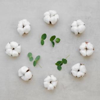 Vista superior surtido con flores de algodón