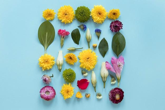 Vista superior del surtido de flores preciosas