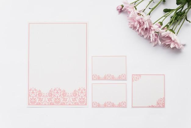 Vista superior de tarjetas en blanco y flores de color rosa sobre fondo blanco