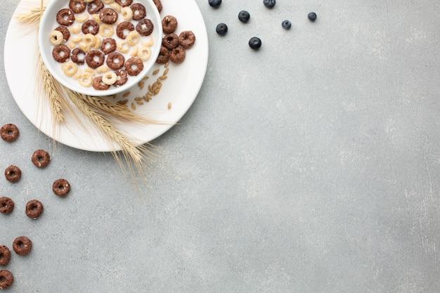Vista superior tazón de cereal con espacio de copia