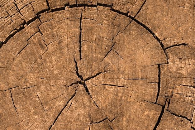 Vista superior de la textura de madera