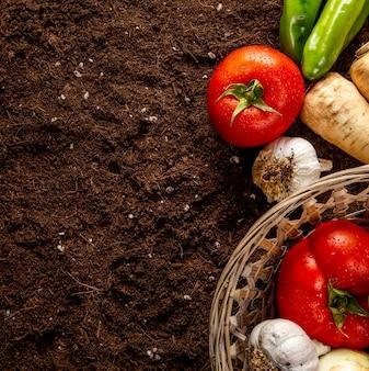 Vista superior de tomates con canasta de verduras