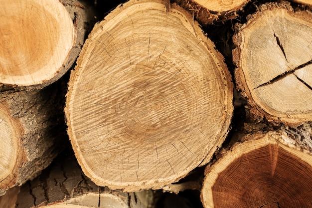 Vista superior de troncos de madera
