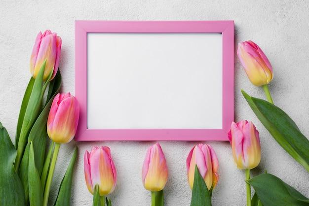 Vista superior de tulipanes al lado del marco