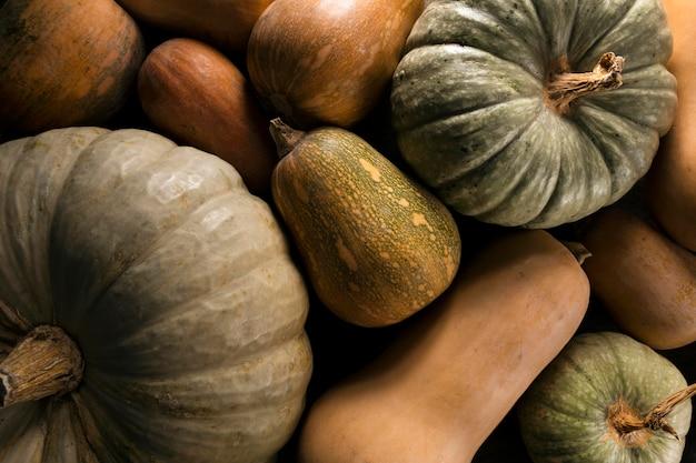Vista superior de la variedad de calabaza de otoño.