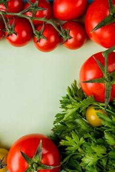 Vista superior de verduras como cilantro y tomate en blanco