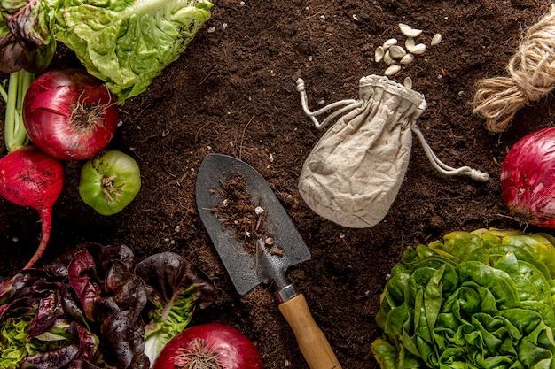 Vista superior de verduras con ensalada y herramienta