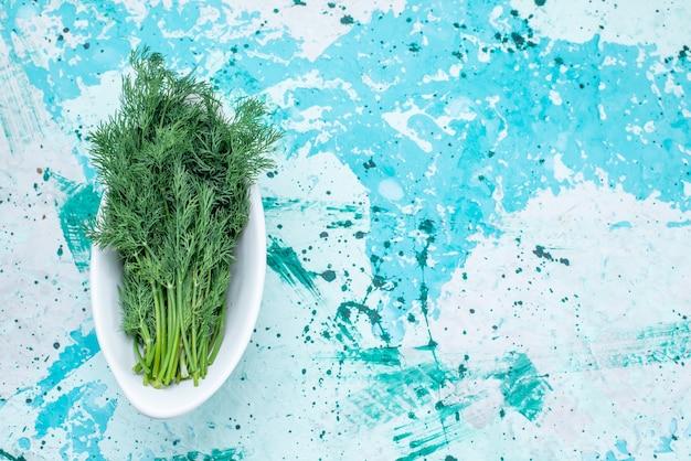 Vista superior de verduras frescas aisladas dentro de la placa en el escritorio de color azul brillante, producto de hoja verde comida comida vegetal
