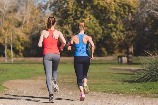 Vista trasera de deportistas saludables corriendo al aire libre