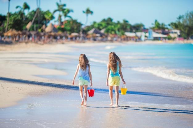 Vista trasera de hermosas chicas caminando por la orilla del mar tropical