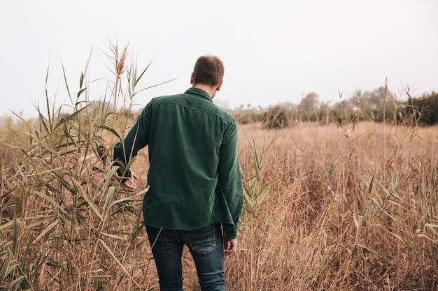 Vista trasera hombre caminando a través del campo de trigo