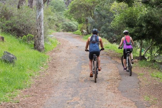 Vista trasera del hombre y la mujer en bicicleta en el bosque