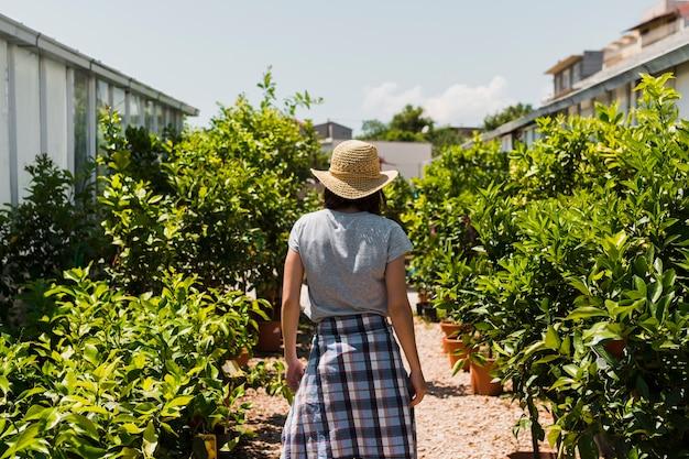 Vista trasera de mujer entre plantas.