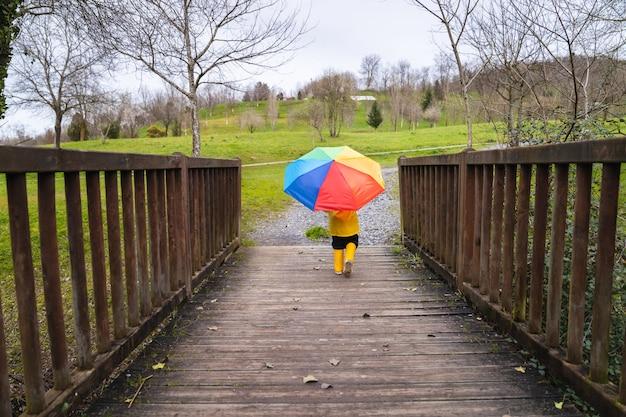 Vista trasera de un niño con un impermeable amarillo y botas de lluvia y un paraguas de colores del arco iris en la mano caminando por un puente del bosque