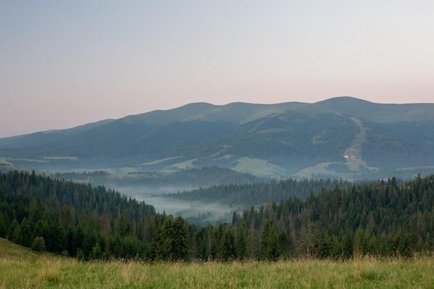 Vista de un valle en una hermosa mañana con niebla entre montañas