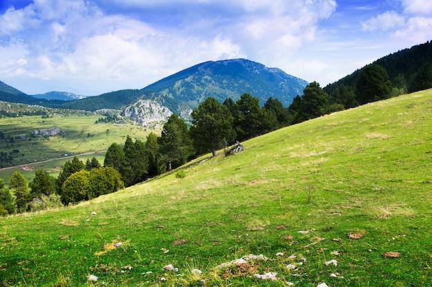 Vista de verano de la pradera de las tierras altas