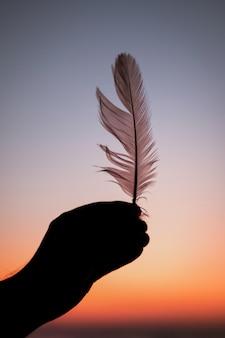 Vista vertical de una persona sosteniendo una pluma durante la puesta de sol