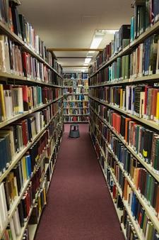 Volúmenes de libros en la estantería de la biblioteca