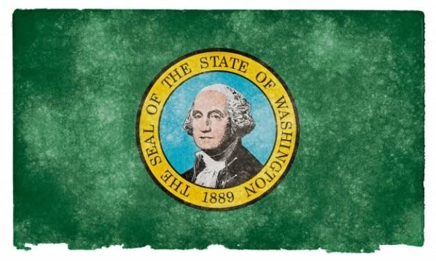 Washington state grunge bandera