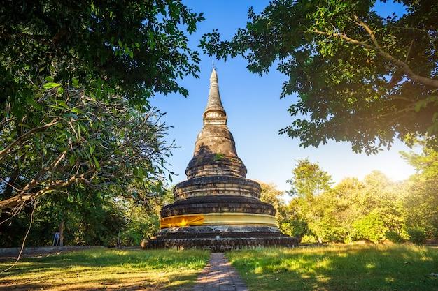 Wat umong suan puthatham es un templo budista en chiang mai, tailandia.