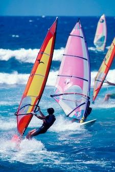 Windsurfistas de aventura practicando windsurf juntos en olas en el océano
