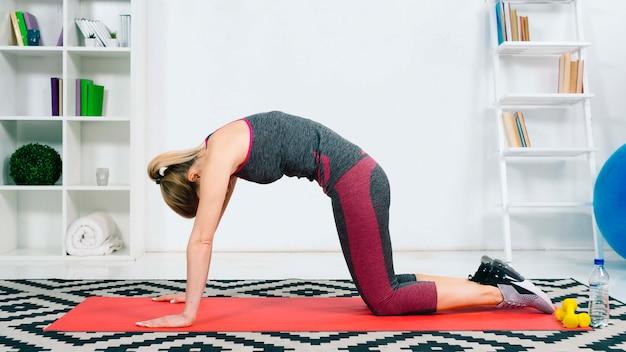 Yoga practicante de la mujer joven que hace el asana emparejado con actitud del gato