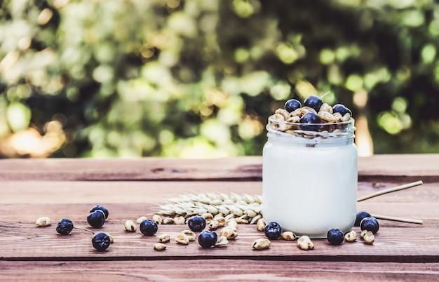 Yogurt casero con frutas y cereales.