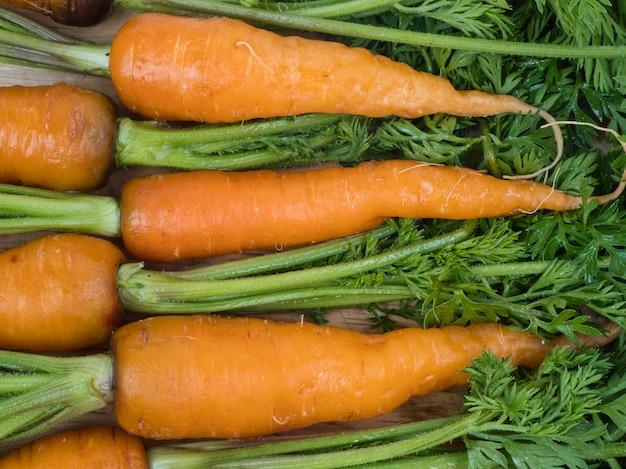La zanahoria bebé nutre las células de la piel.