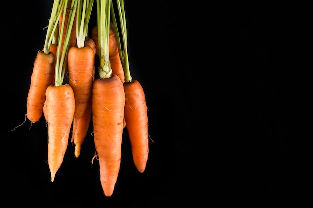 Zanahorias sobre fondo negro con espacio de copia