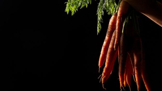 Zanahorias de vista frontal con espacio de copia