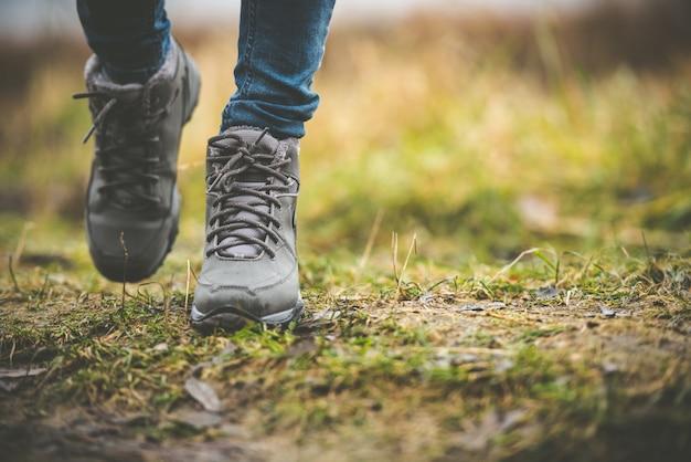 Zapatos en un bosque