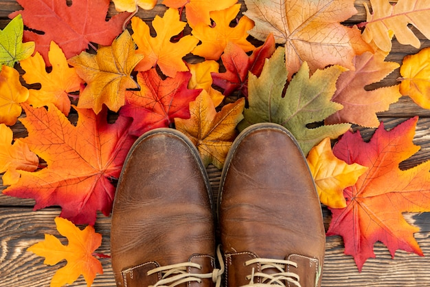 Zapatos marrones en hojas coloridas