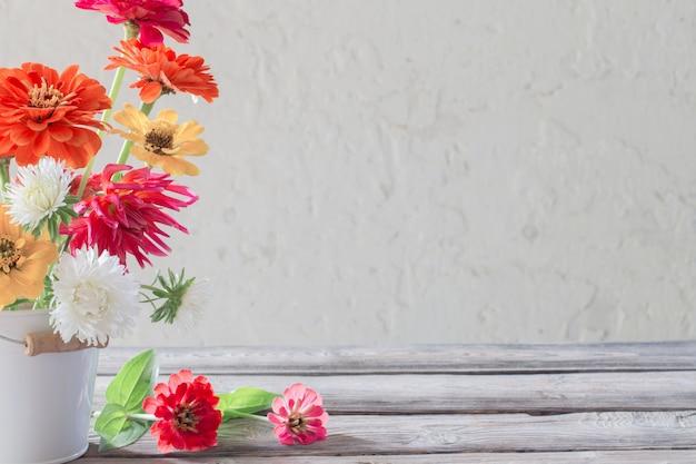 Zinnia flores en balde sobre fondo blanco.